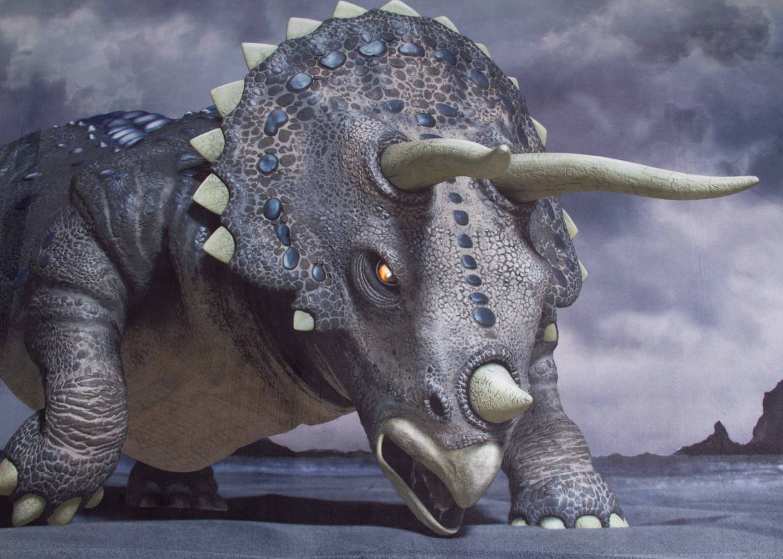 Kinderteppich Pangaea - Triceratops